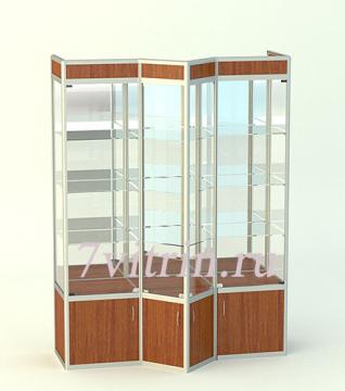Стеклянная витрина для школьного музея Жасмин